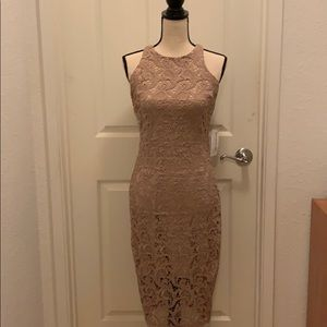 NWT NY&Co Eva Mendes Lace Dress, XS